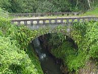 菅牟田の石橋