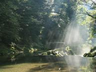 憩いの森キャンプ場