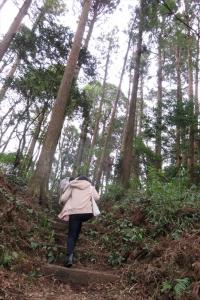 住吉神社裏のパワースポットへ向かう坂