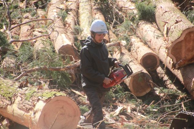 林業を担う!原口さん、城戸さんの場合